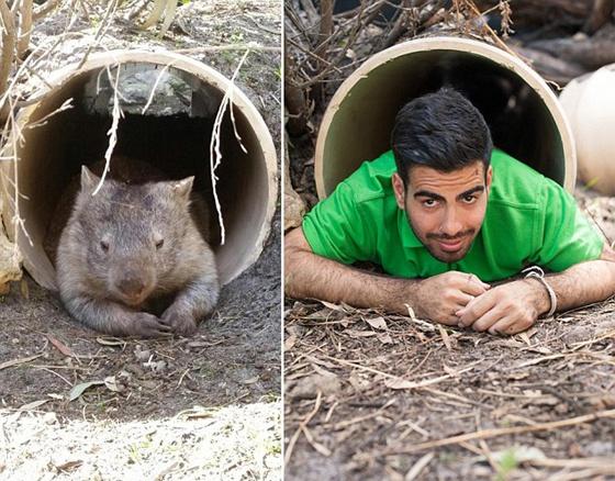 动物园管理员模仿动物搞笑照片蹿红网络(组图)