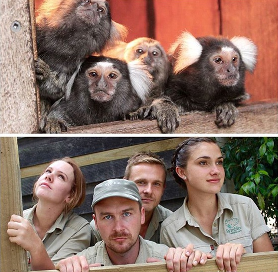 动物园管理员模仿动物搞笑照片蹿红网络(组图) (2)