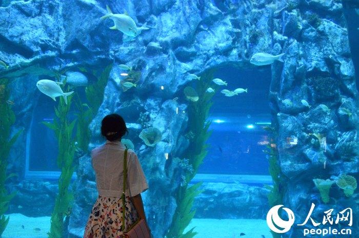 壁纸 海底 海底世界 海洋馆 水族馆 700_464