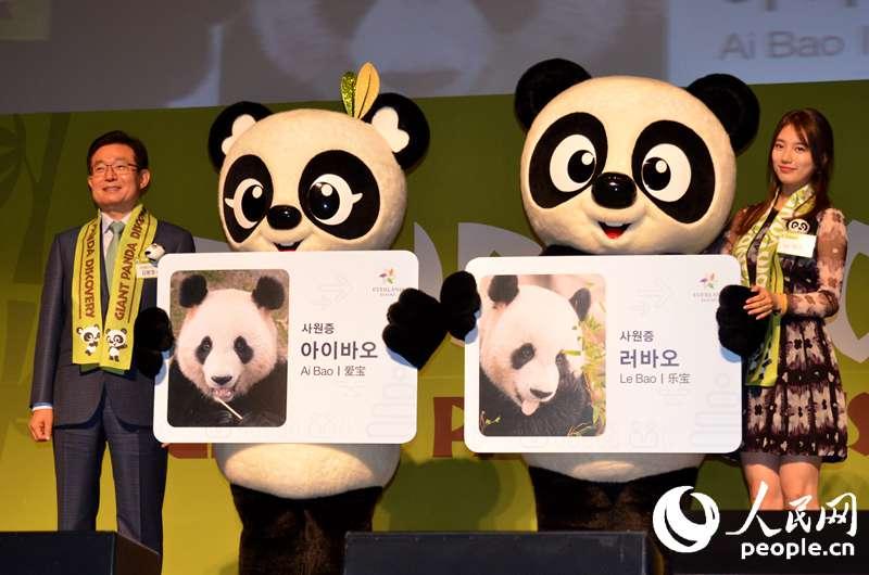 走进熊猫馆,人们隔着玻璃便可观赏到两只圆滚滚的萌宝.