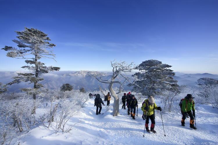 拒做宅男宅女!盤點韓國人喜愛的冬季戶外運動