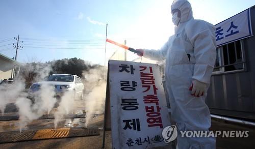 社会      人民网1月4日讯 韩国爆发史上最严重h5n6禽流感,疫情迅速