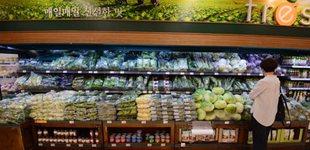 韩9月PPI同比环比均扩大 蔬菜价格大幅上涨