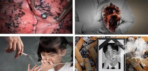 韩国12月换烟盒警示图片 每两年更换图片